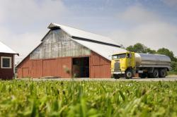 Cypress Grove Barn and Milk Truck — Arcata, CA